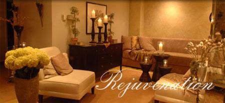 metropolis spa salon shop princeton. Black Bedroom Furniture Sets. Home Design Ideas